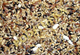 Deli Nature 83-EUROPEAN WILDBIRDS 1kg